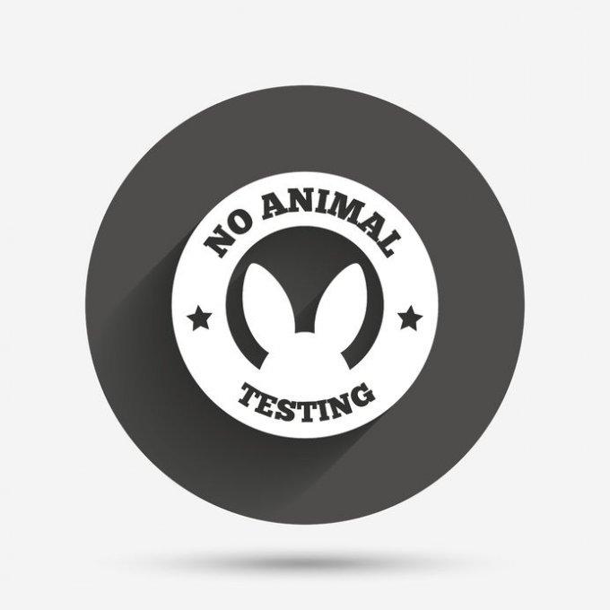 Testowanie kosmetyków na zwierzętach to wciąż gorący temat – 8 rzeczy, które trzeba wiedzieć