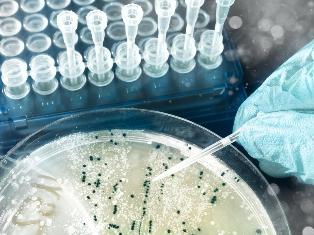 Konserwanty zabezpieczają przed pojawieniem się groźnych grzybów i bakterii