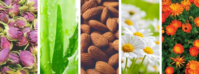 Organiczne składy podkładów Zuii